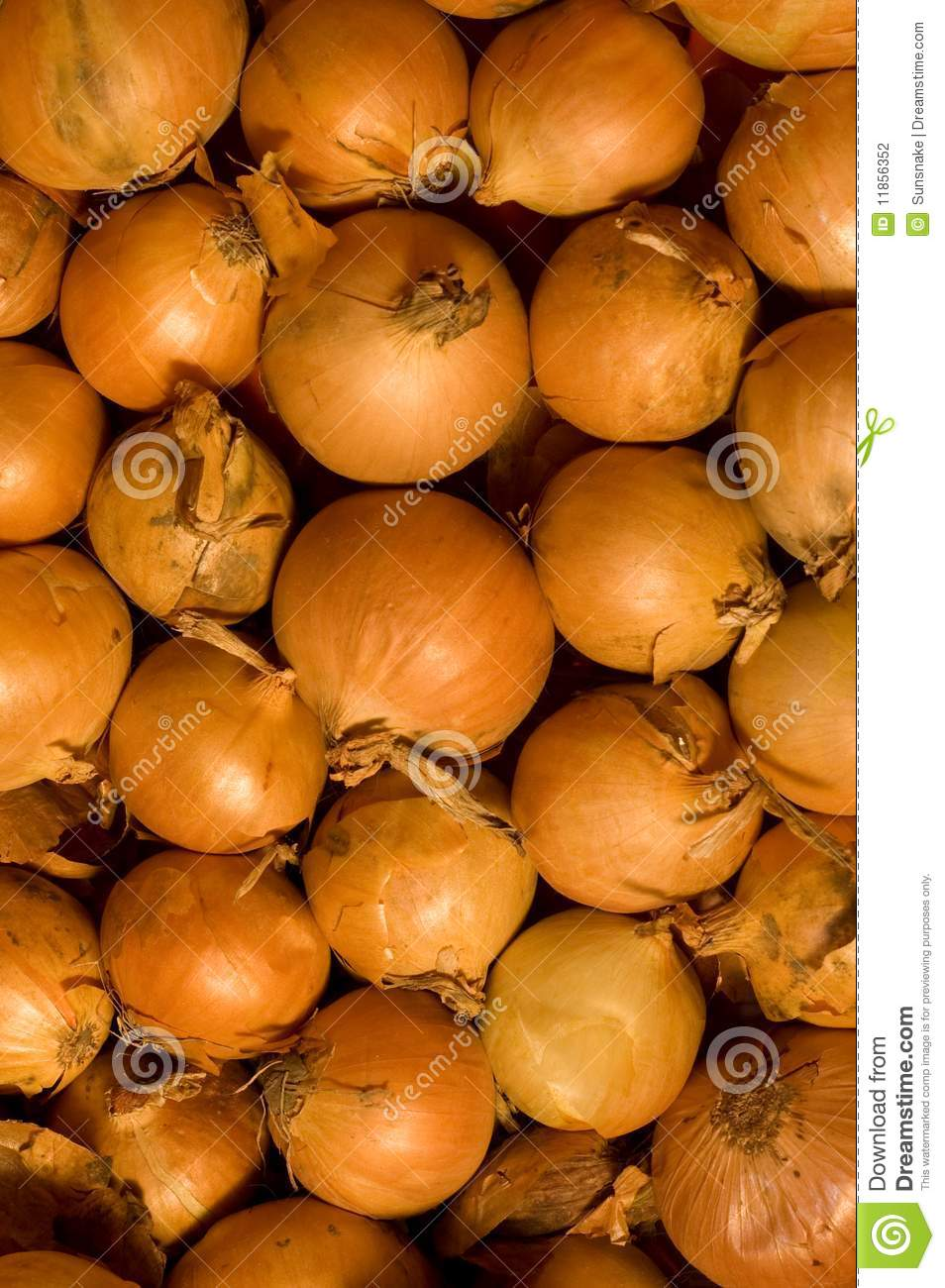 We offer over 13 Orange Onions coupons for 30% sitewide savings, plus check our hand-picked promo codes, exclusive offers and much more.