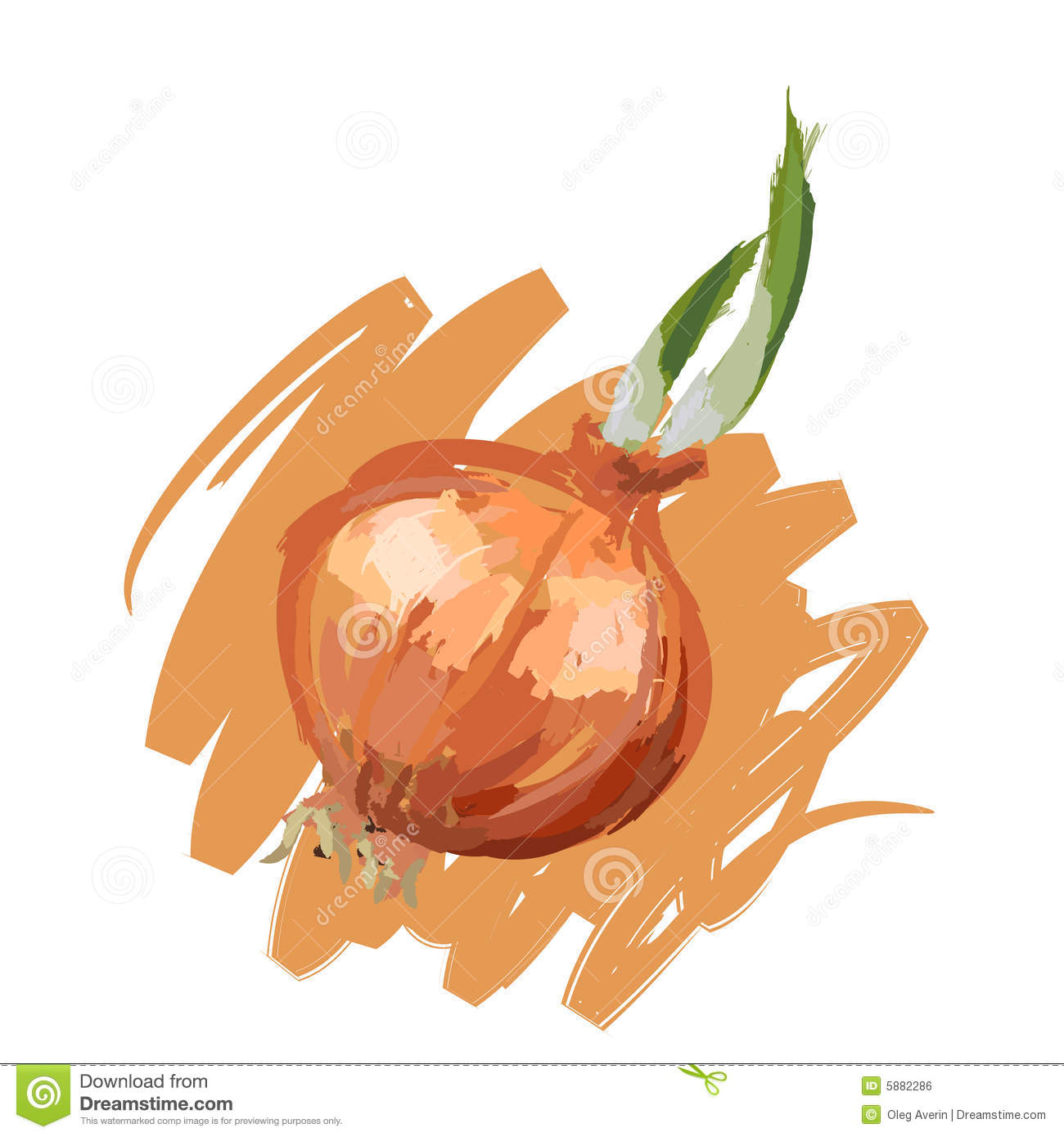 Onion Royalty Free Stock Image - Image: 5882286