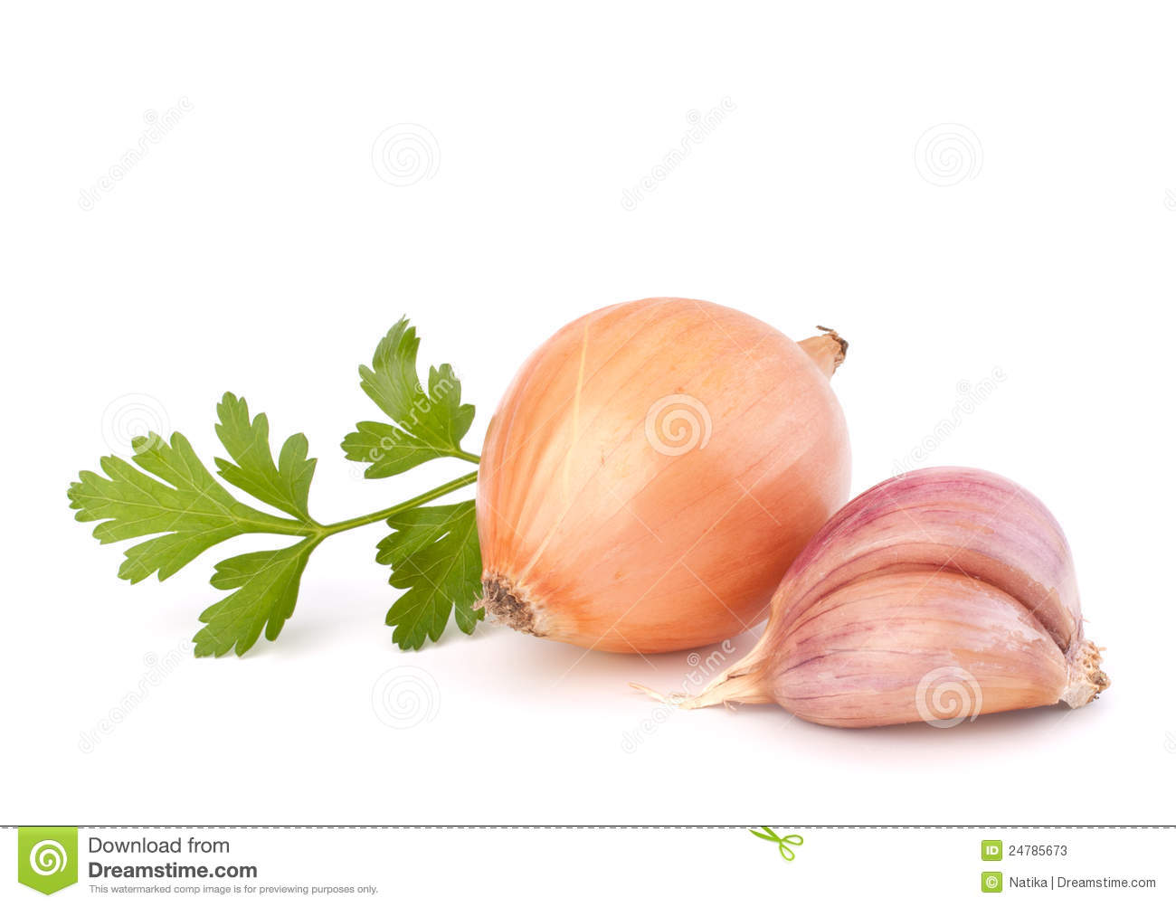 onion and garlic clove stock photos image 24785673