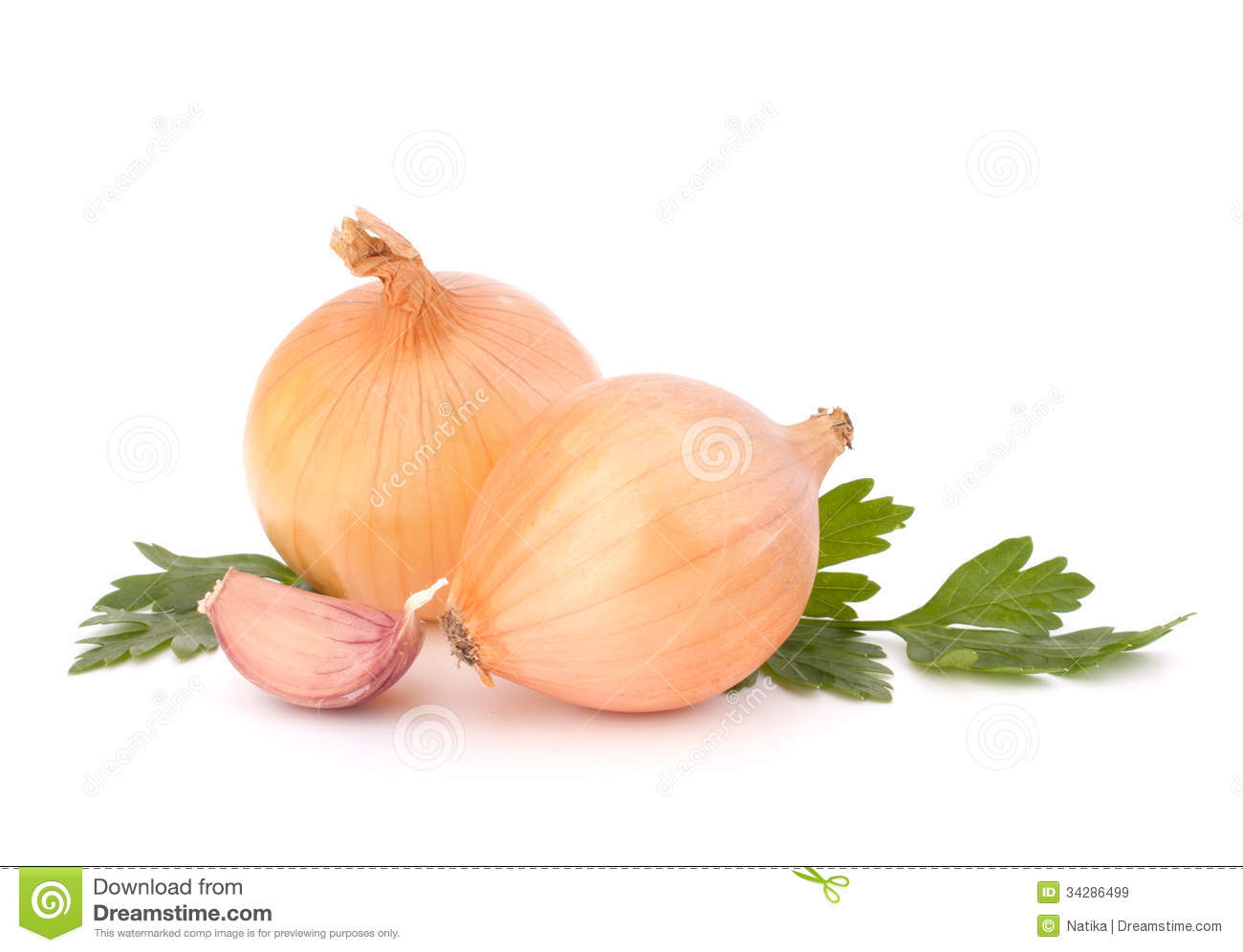 onion and garlic clove royalty free stock images image
