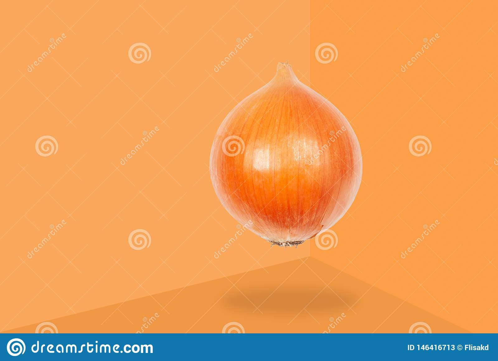 Onion levitate in air on orange background. Concept of vegetable levitation