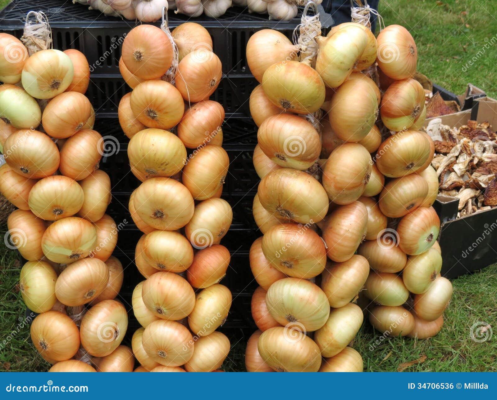 Onion String Royalty Free Stock Image - Image: 34706536
