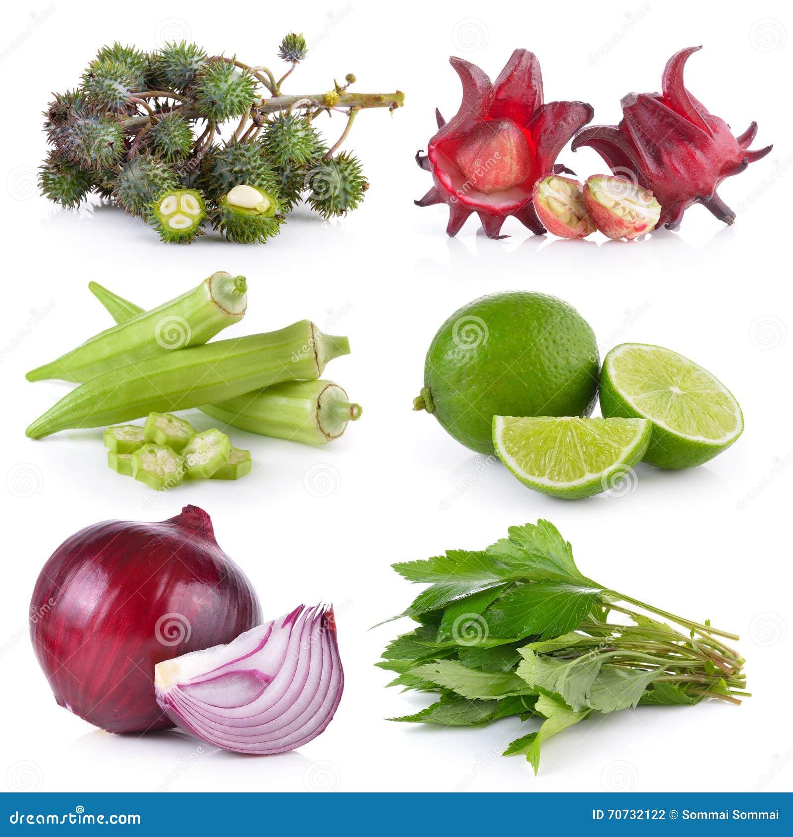 Many Of Roselle Fruits Hibiscus Sabdariffa Stock Image