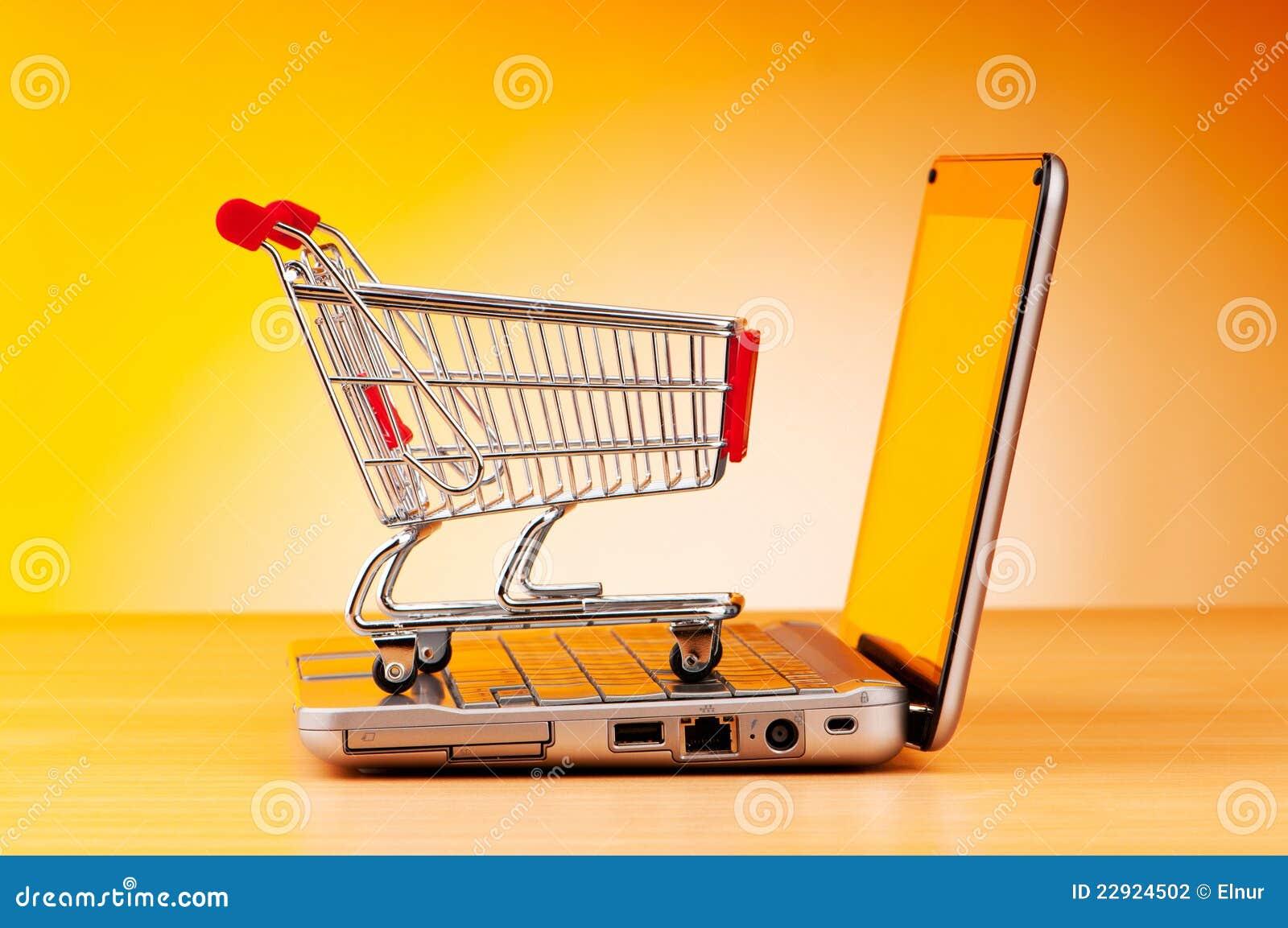 Online het winkelen van Internet concept