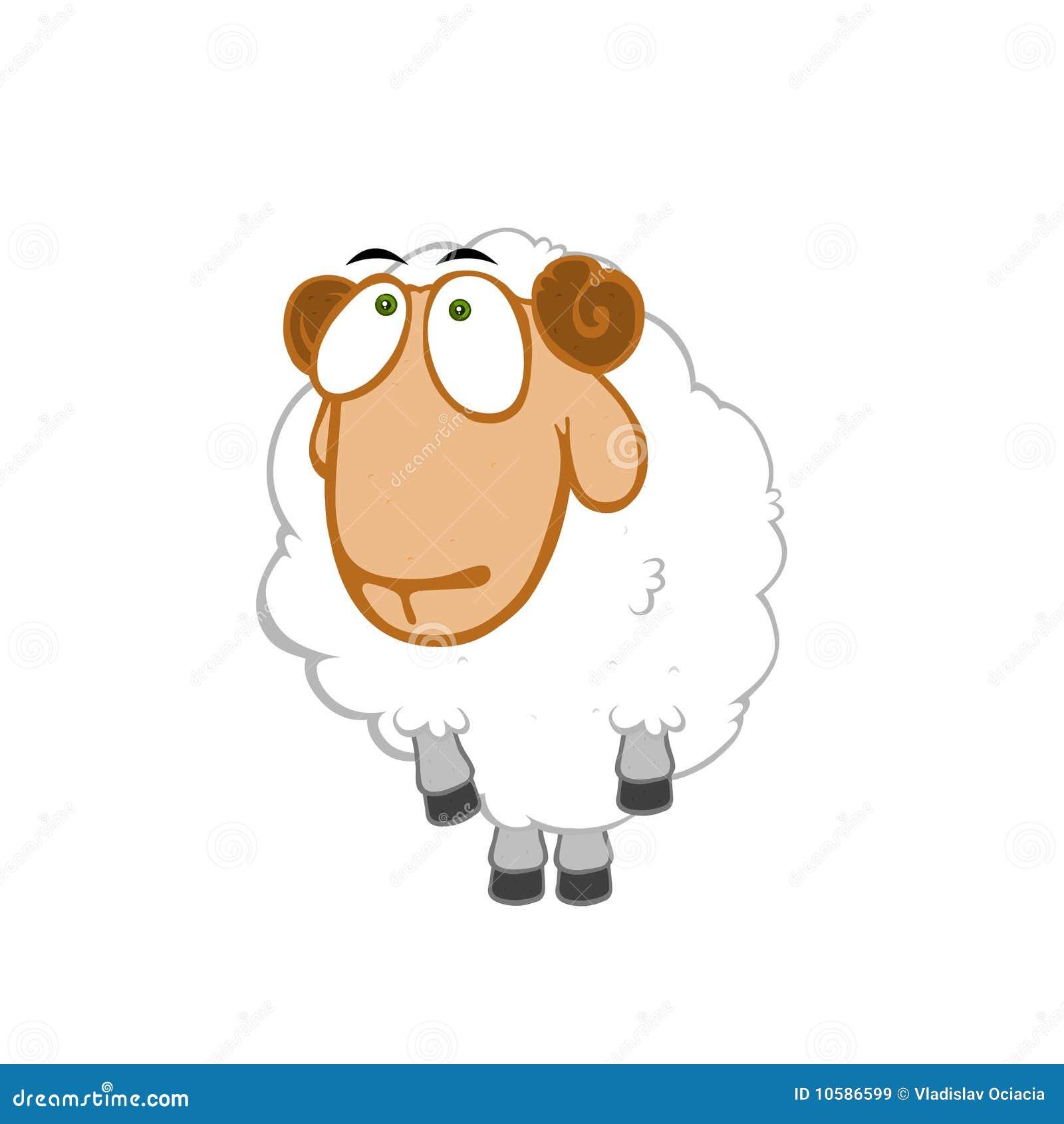 Onschuldige schapen
