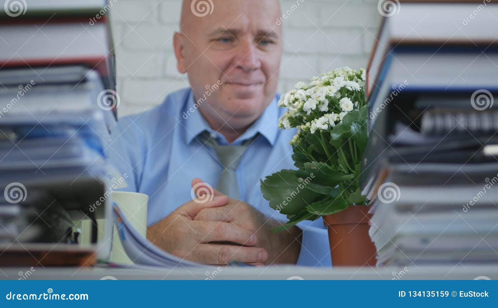 Ontspan rd Businessperson Looking To een Bloem in Bureauzaal