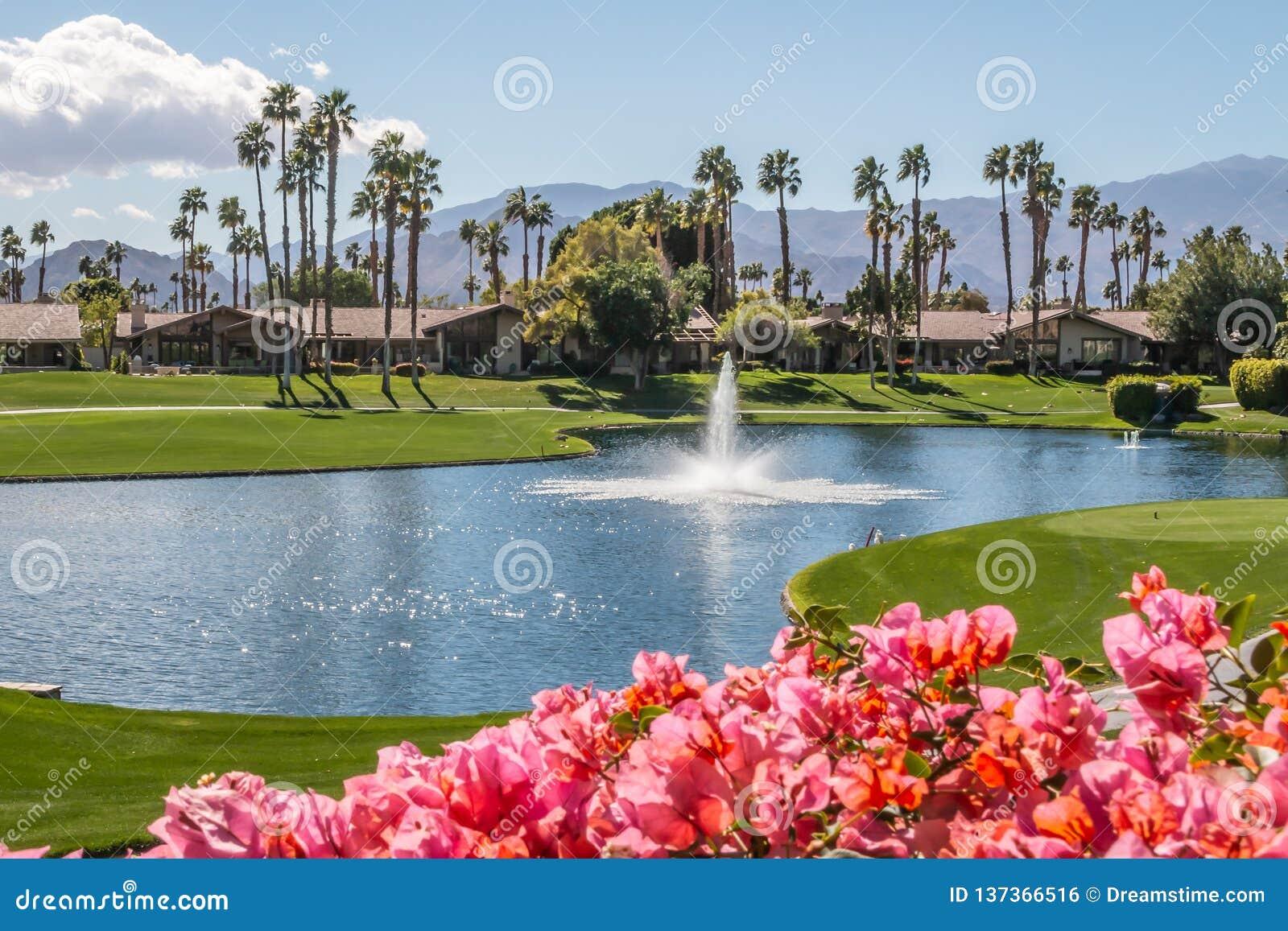Ontspannende de clubmening van het land in Palm Springs, Californië