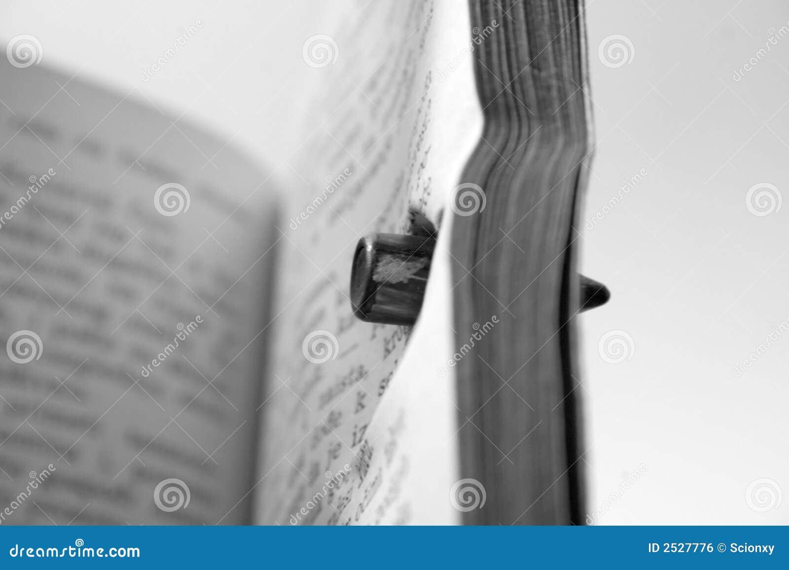 Ontsproten boek