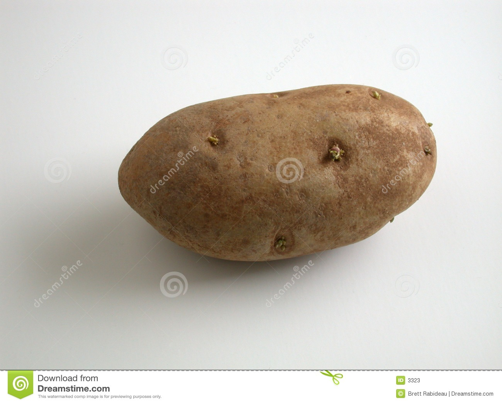 Ontspruitende Aardappel