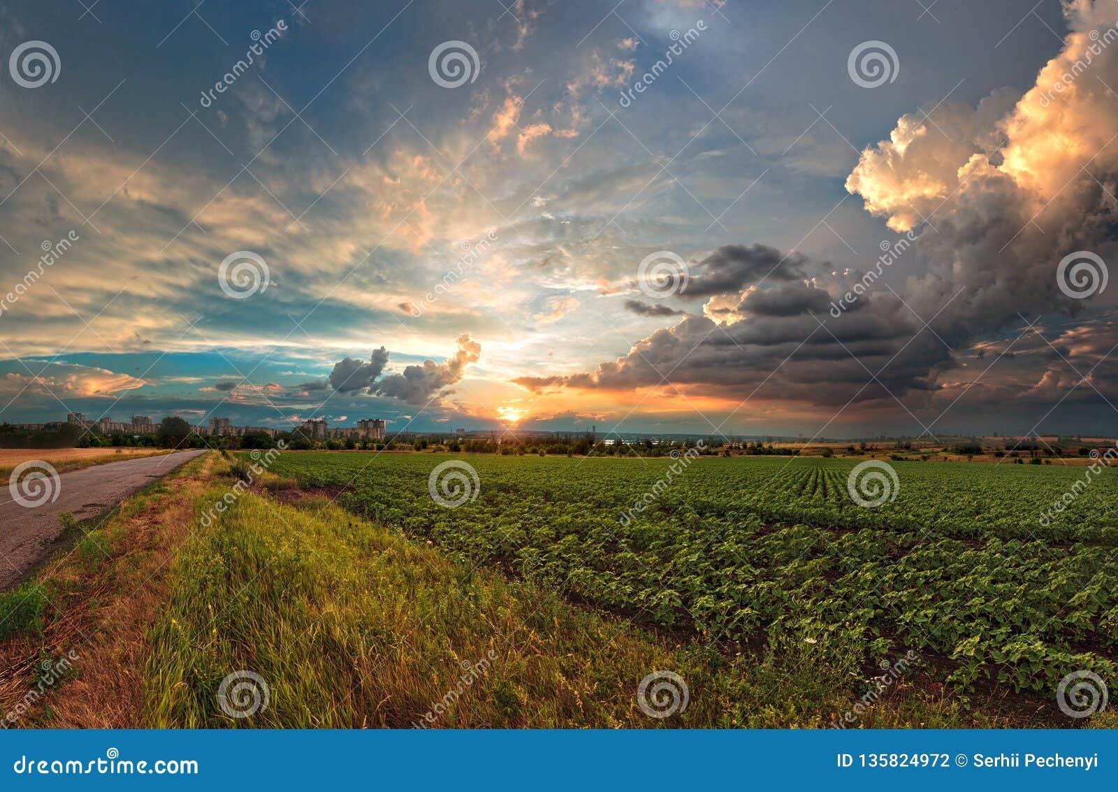 Onweerswolken en de Zonsondergangzomer