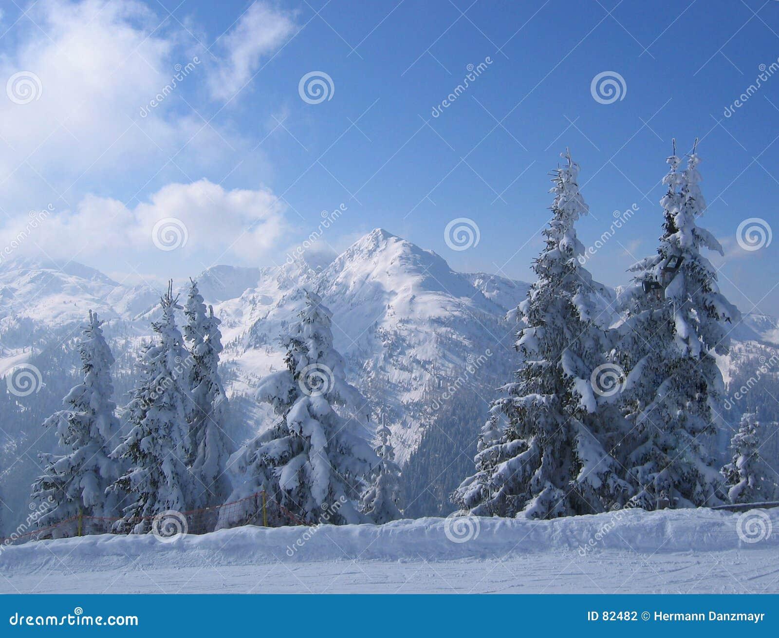 Oostenrijk/de scène van de Winter