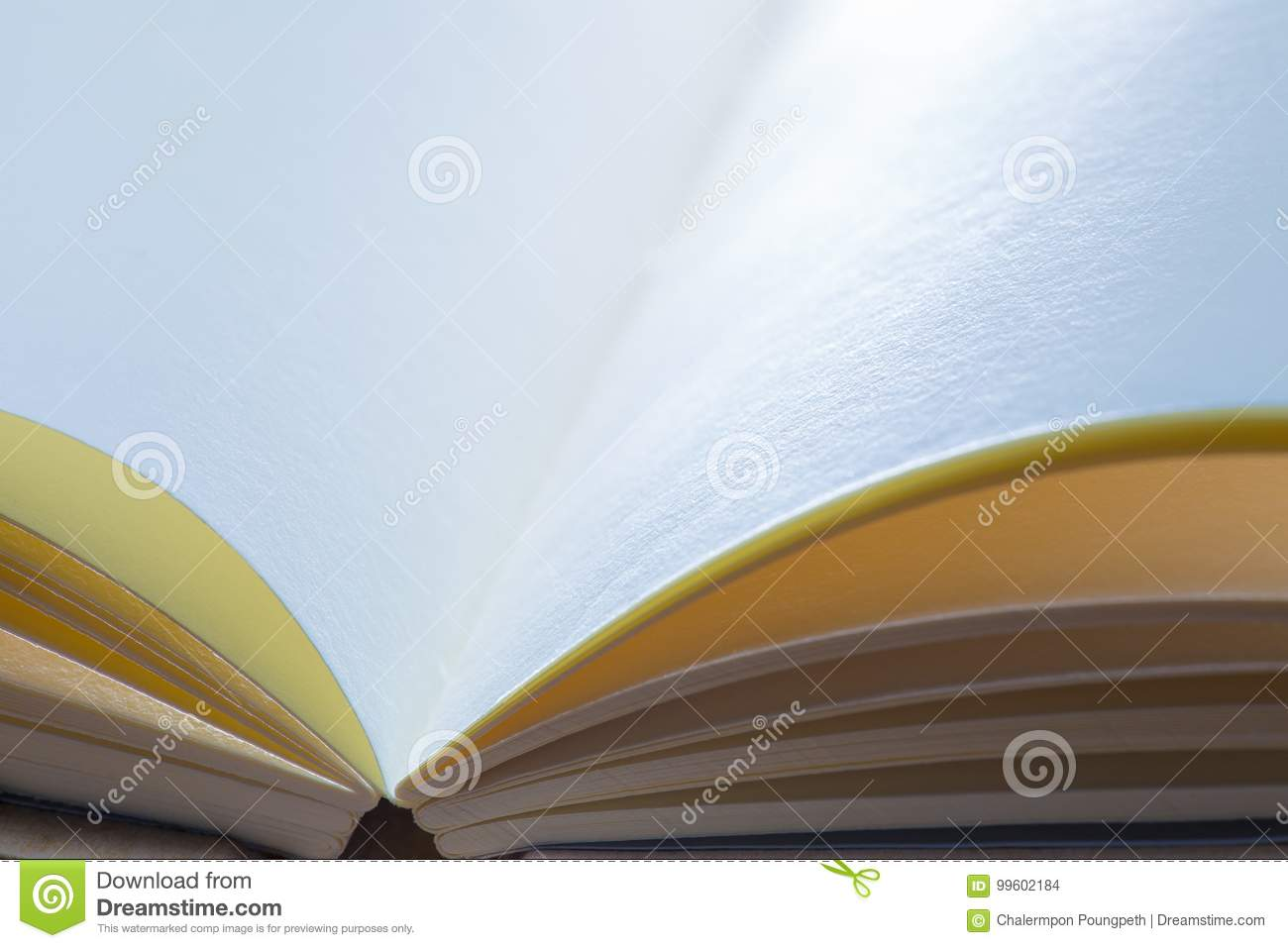 open blank paper notebook in dramatic cool and warm lighting ton