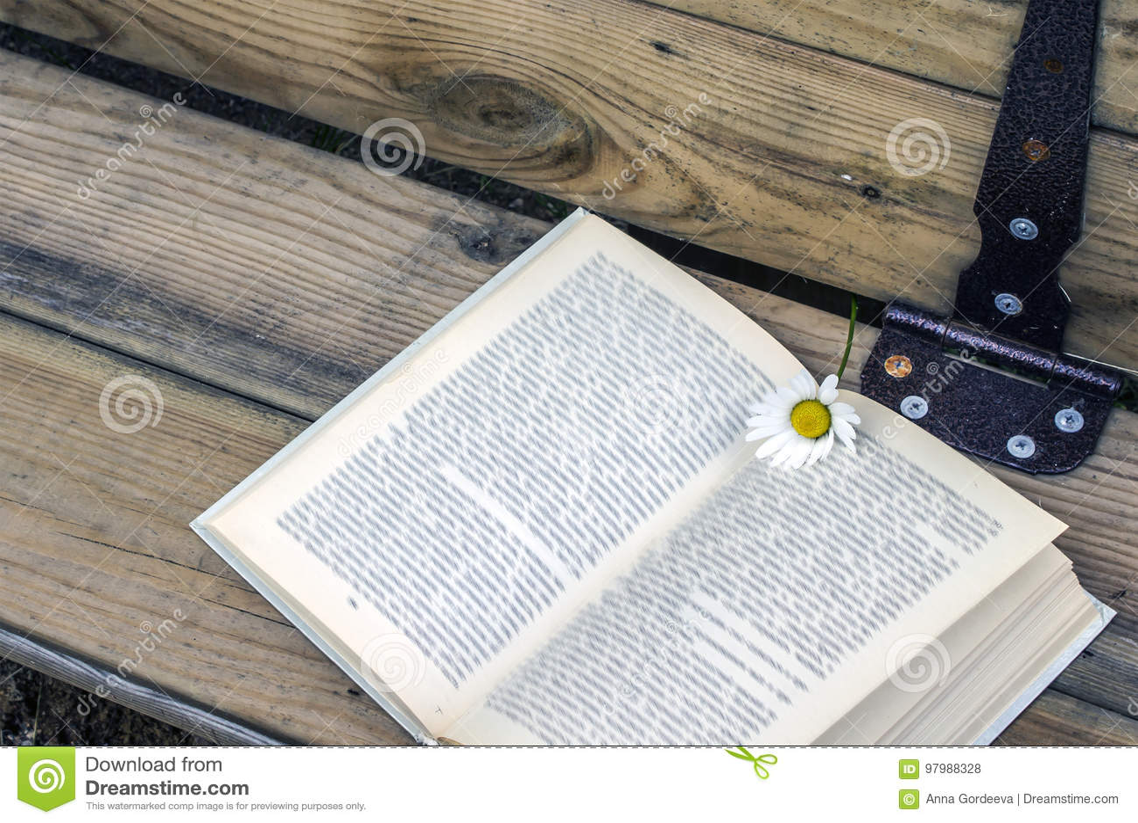 Open boek met een referentie - een madeliefjebloem