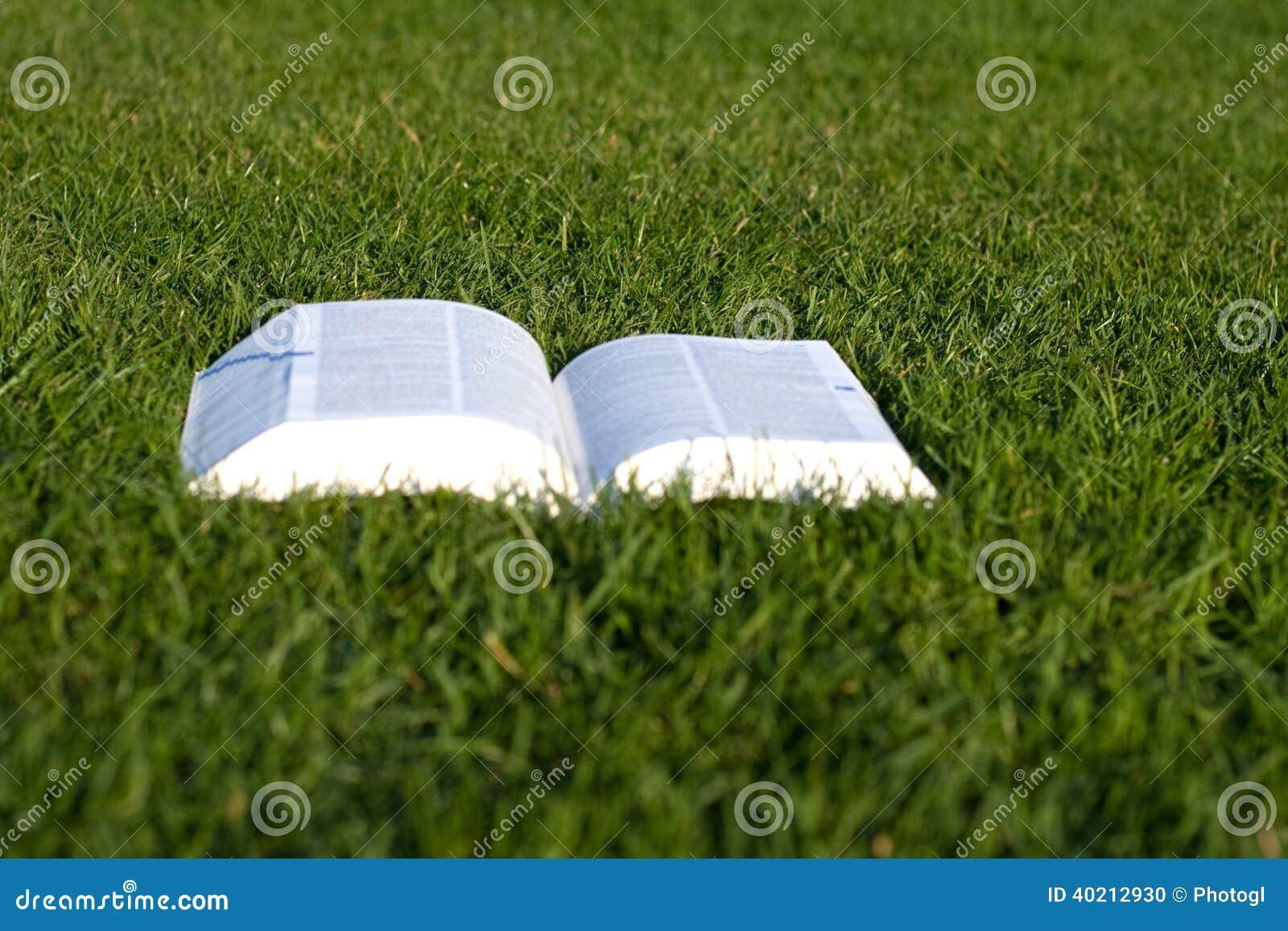 Groen gras boek