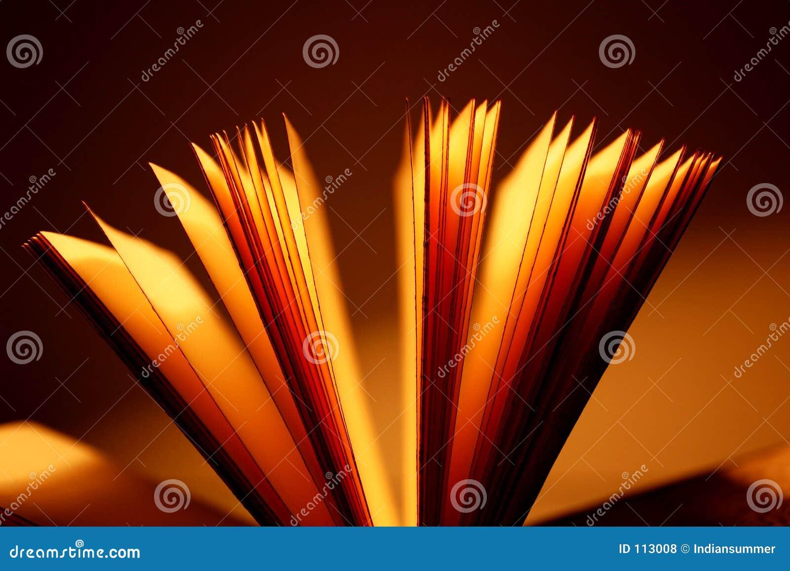 Open boekclose-up