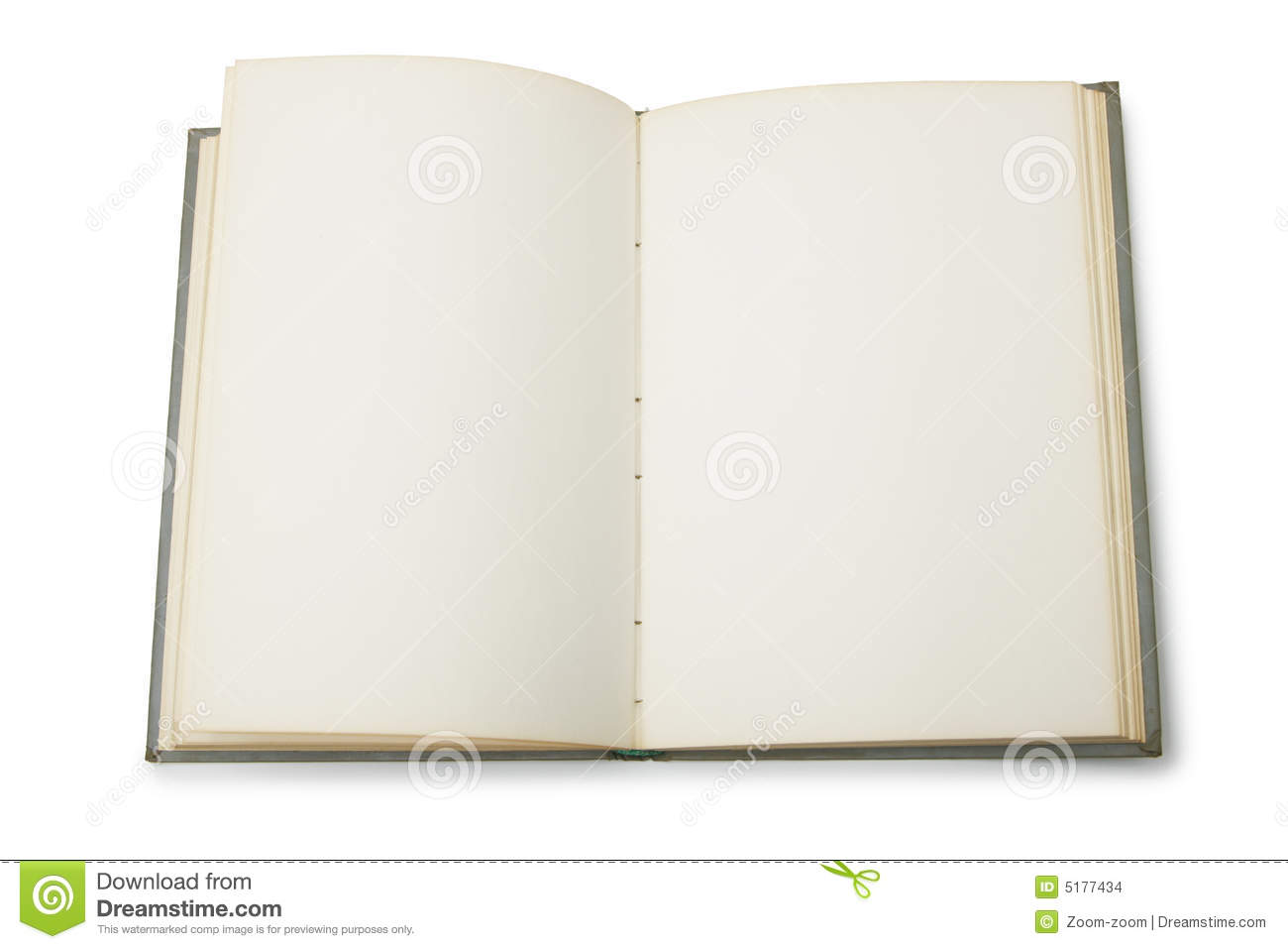 Open Book Pages With Words Open book with blank pages