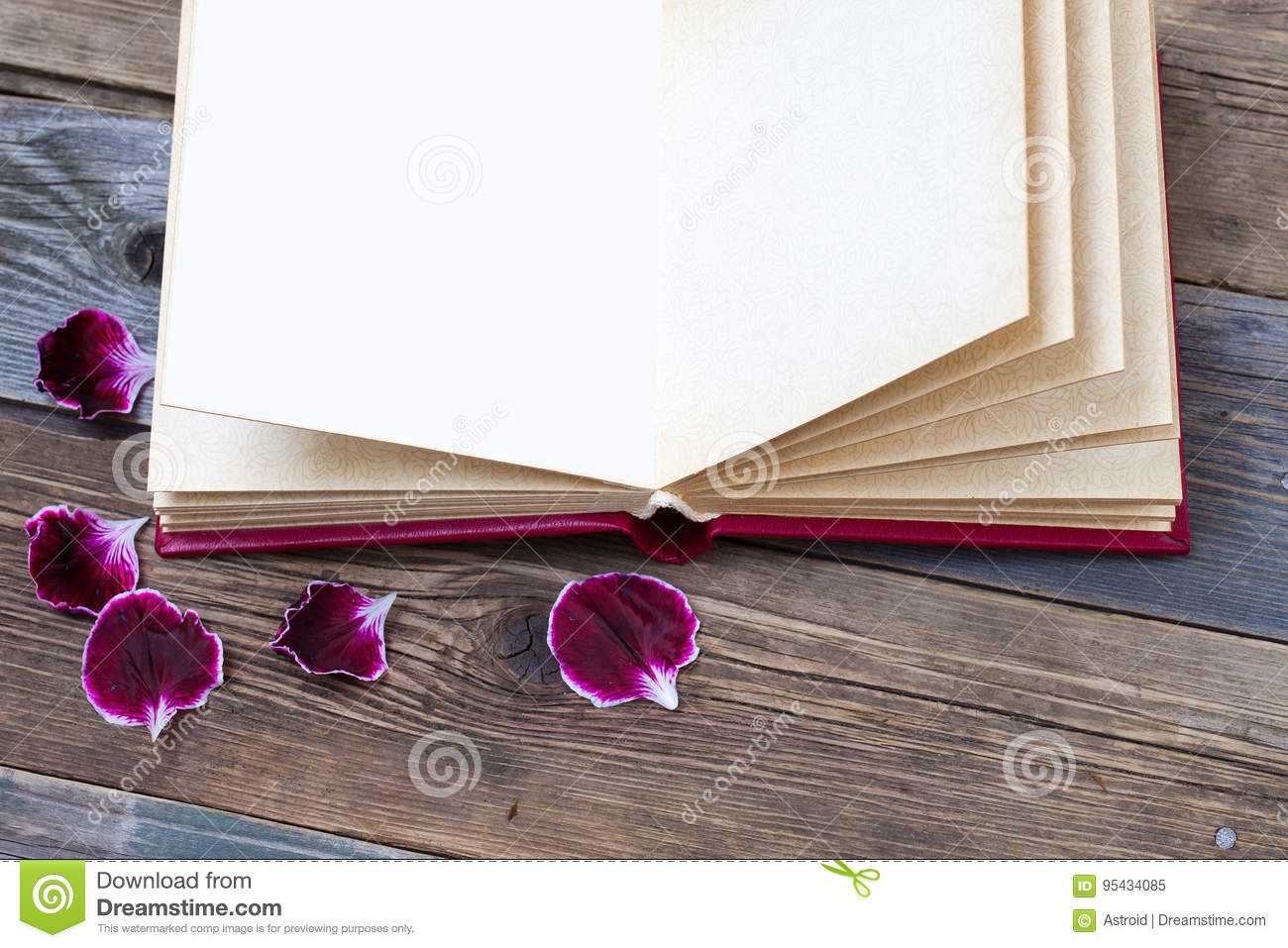 Open Book With Geranium Petals Stock Image - Image of ...
