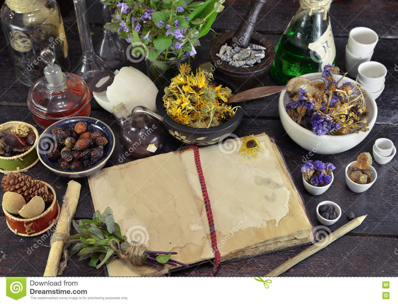 open book with herbs  berries and flowers on witch table