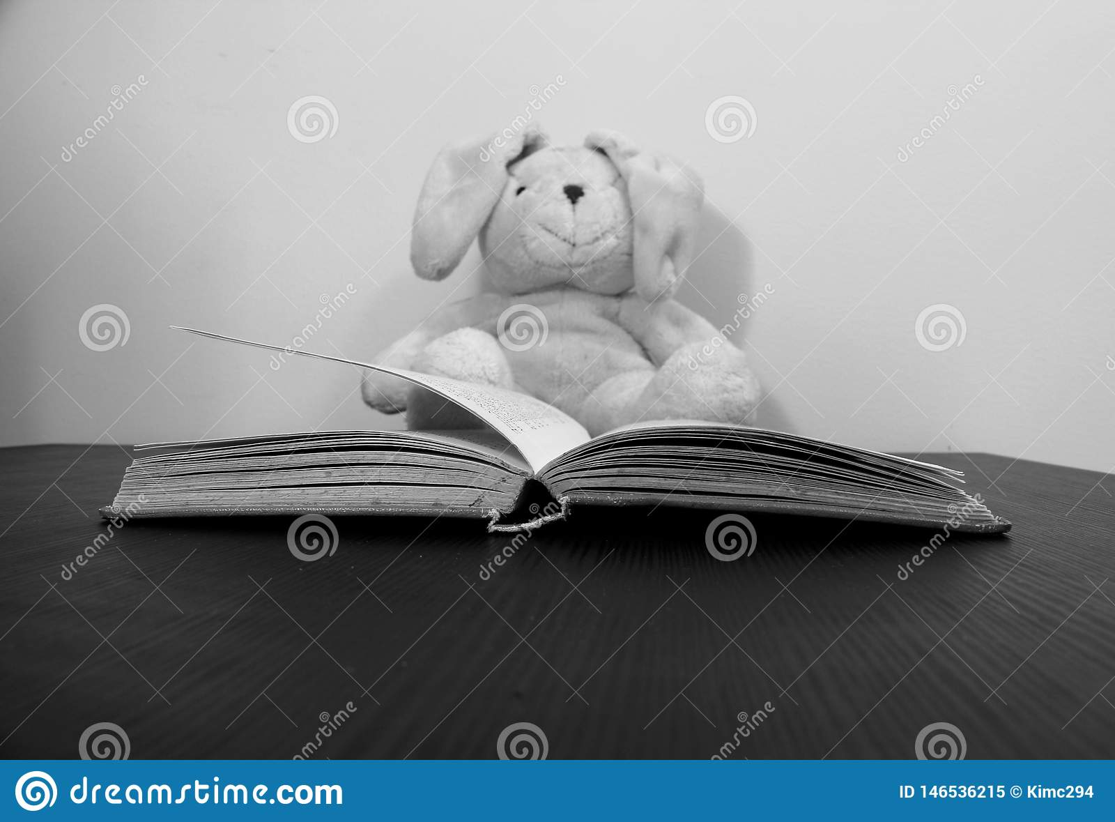 An open book lies on a table. A plush toy, slightly blurred, is seen sitting in the background.
