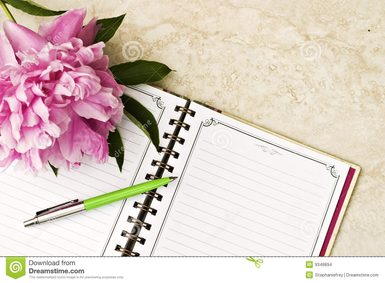 Open Book With Pen Stock Images