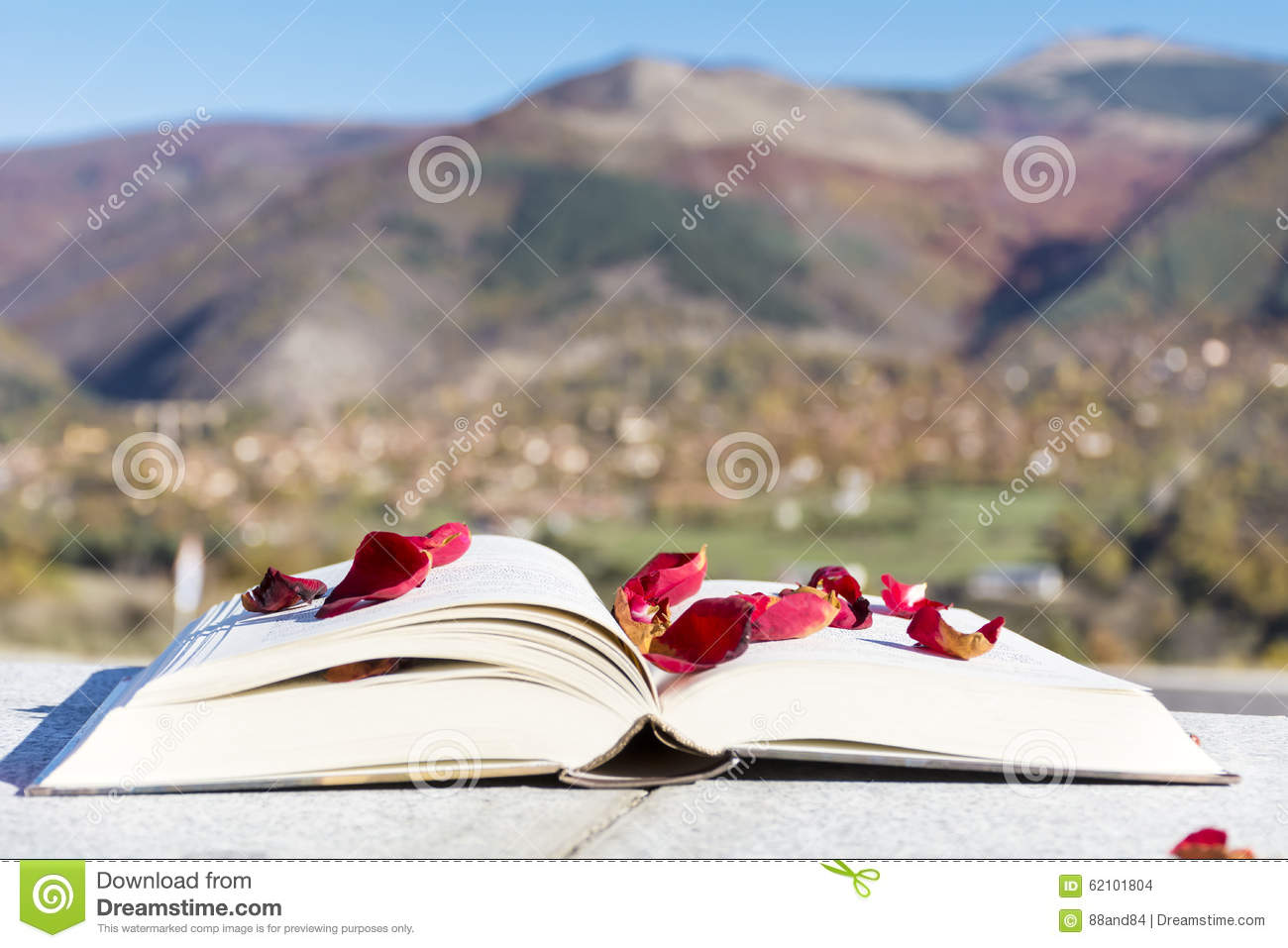 Open Book With Rose Petals On A Mountain Background Stock Photo