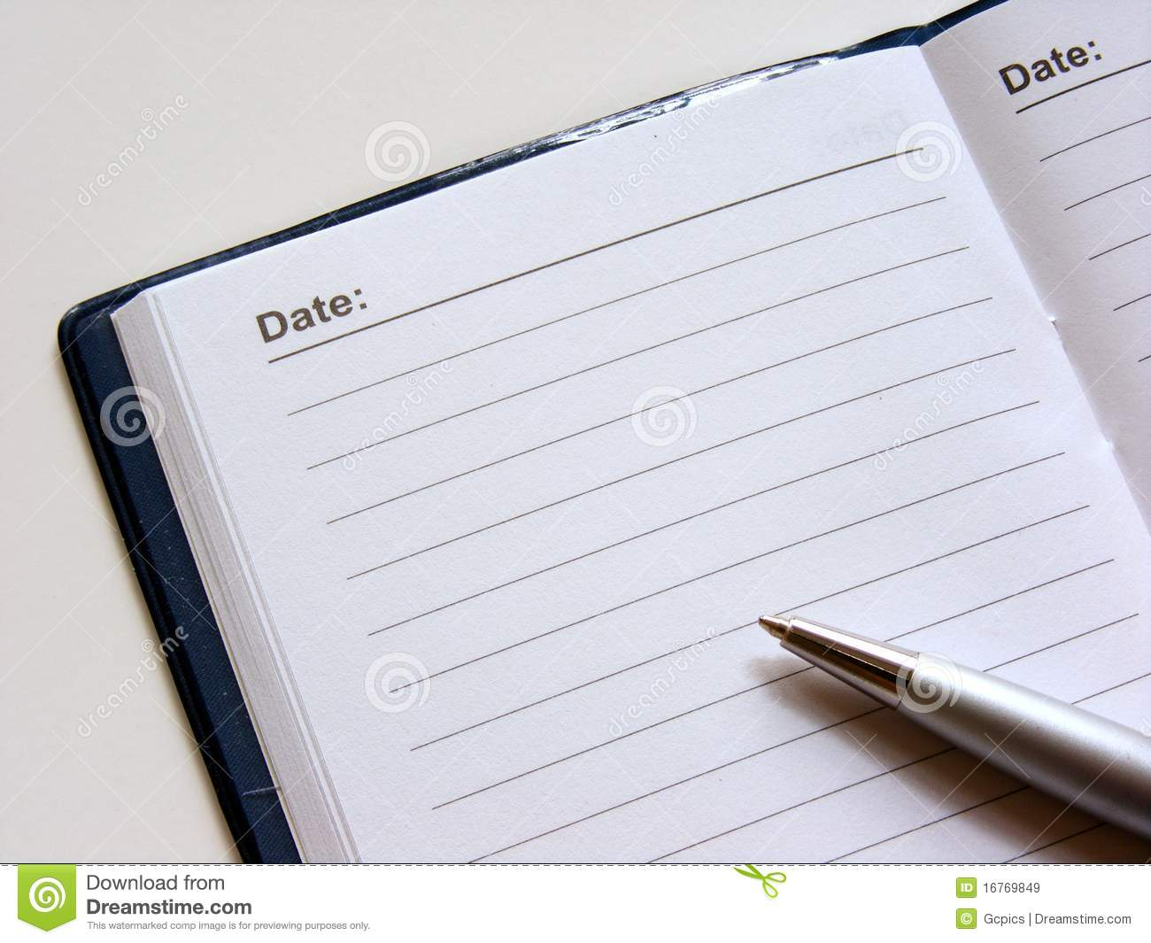Open Diary With Pen Royalty Free Stock Images Image 16769849