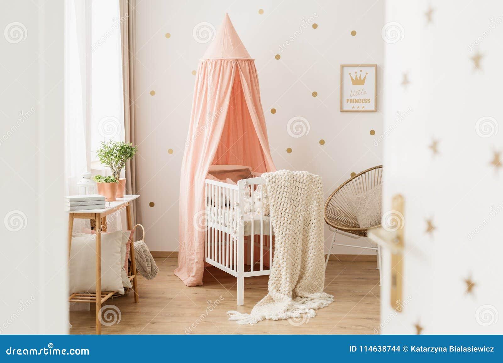 Open Door To Pink Nursery Stock Photo Image Of Peach 114638744