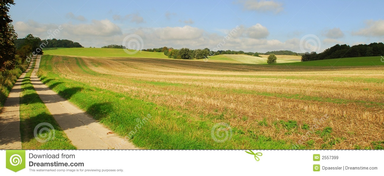 Open field and country road
