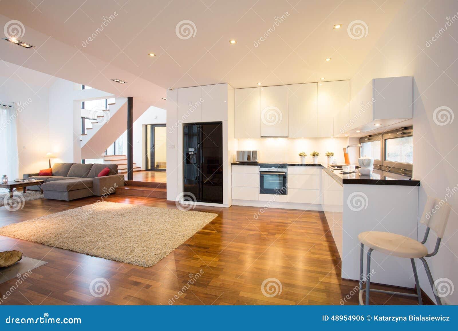 Open keuken en woonkamer stock foto afbeelding bestaande uit laag 48954906 - Moderne keuken en woonkamer ...