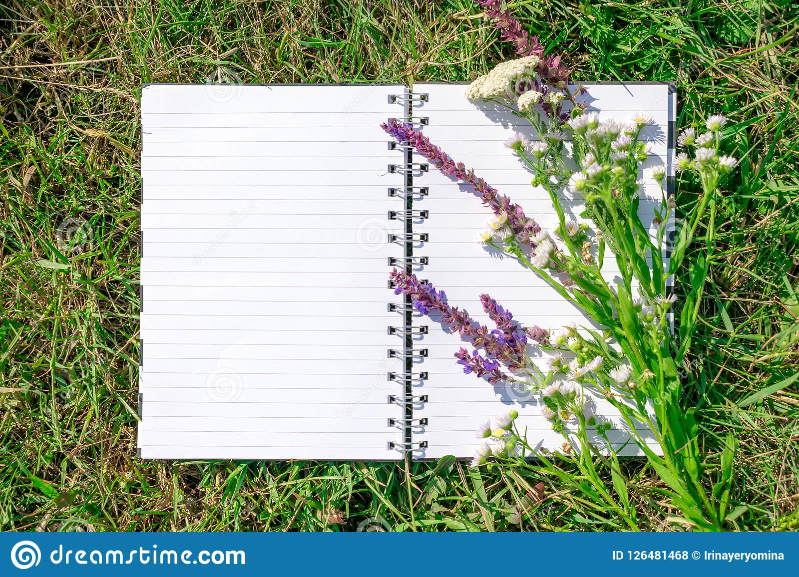 Open Notepad With White Paper On Background Of Green Grass And P Stock Photo - Image of lawn ...