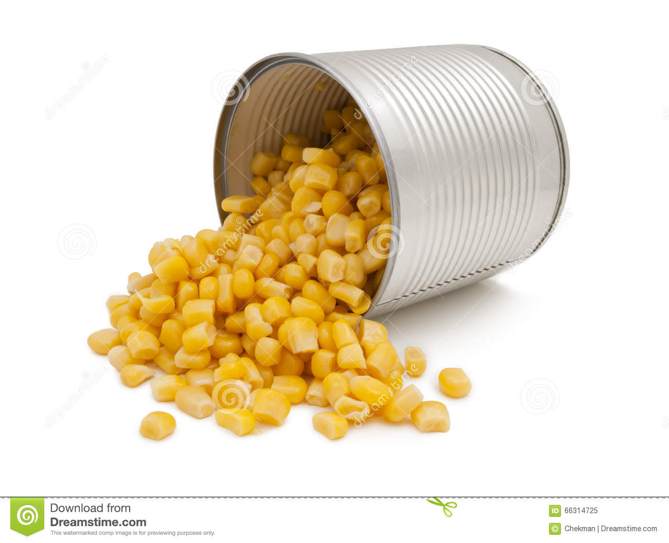 open tin can of corn  isolated  stock photo