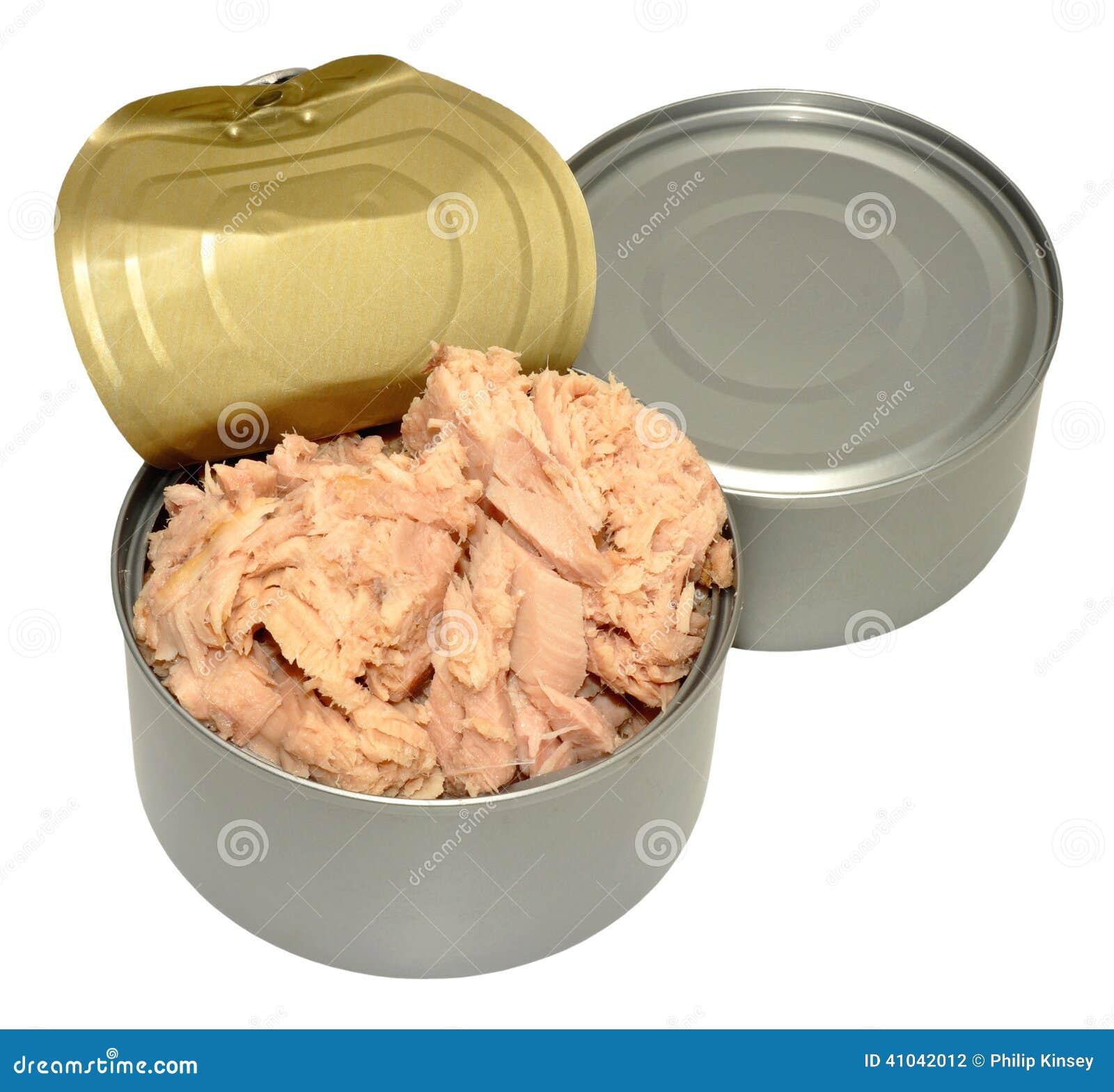 Open Tin Of Tuna Fish stock photo. Image of white, tinned - 41042012