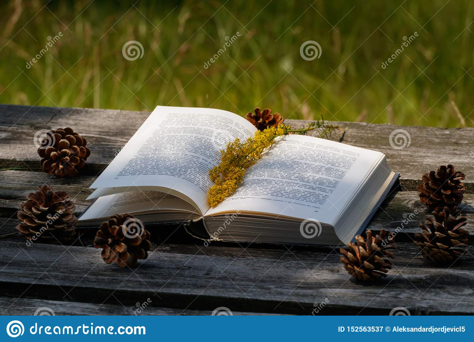 Opened book on the wooden table outdoors