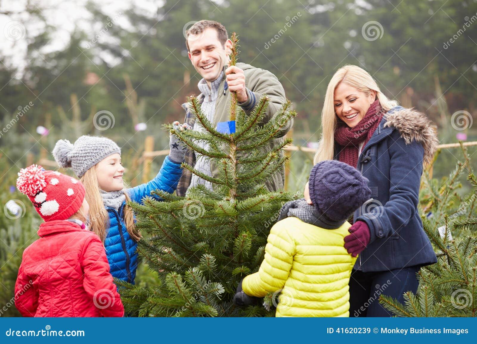Openluchtfamilie die Kerstboom samen kiezen