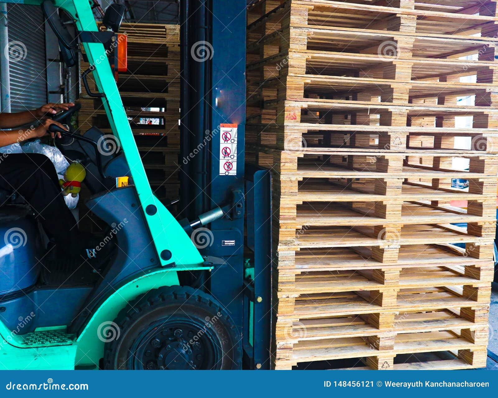 Operador de la carretilla elevadora que maneja las plataformas de madera en el cargo del almac?n para el transporte a la f?brica