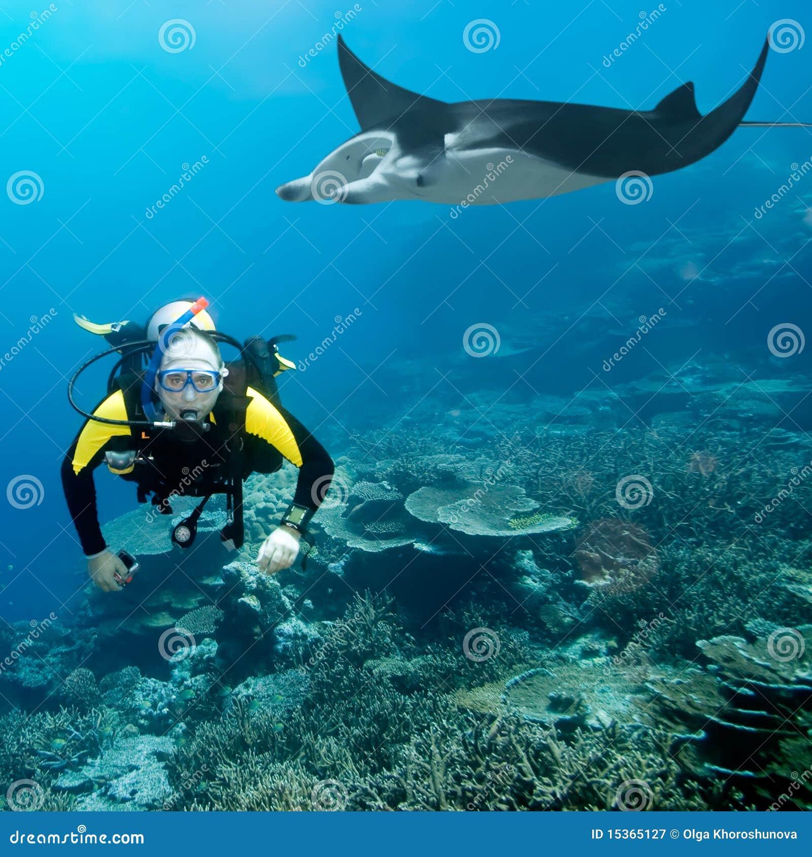 Operatore subacqueo e manta