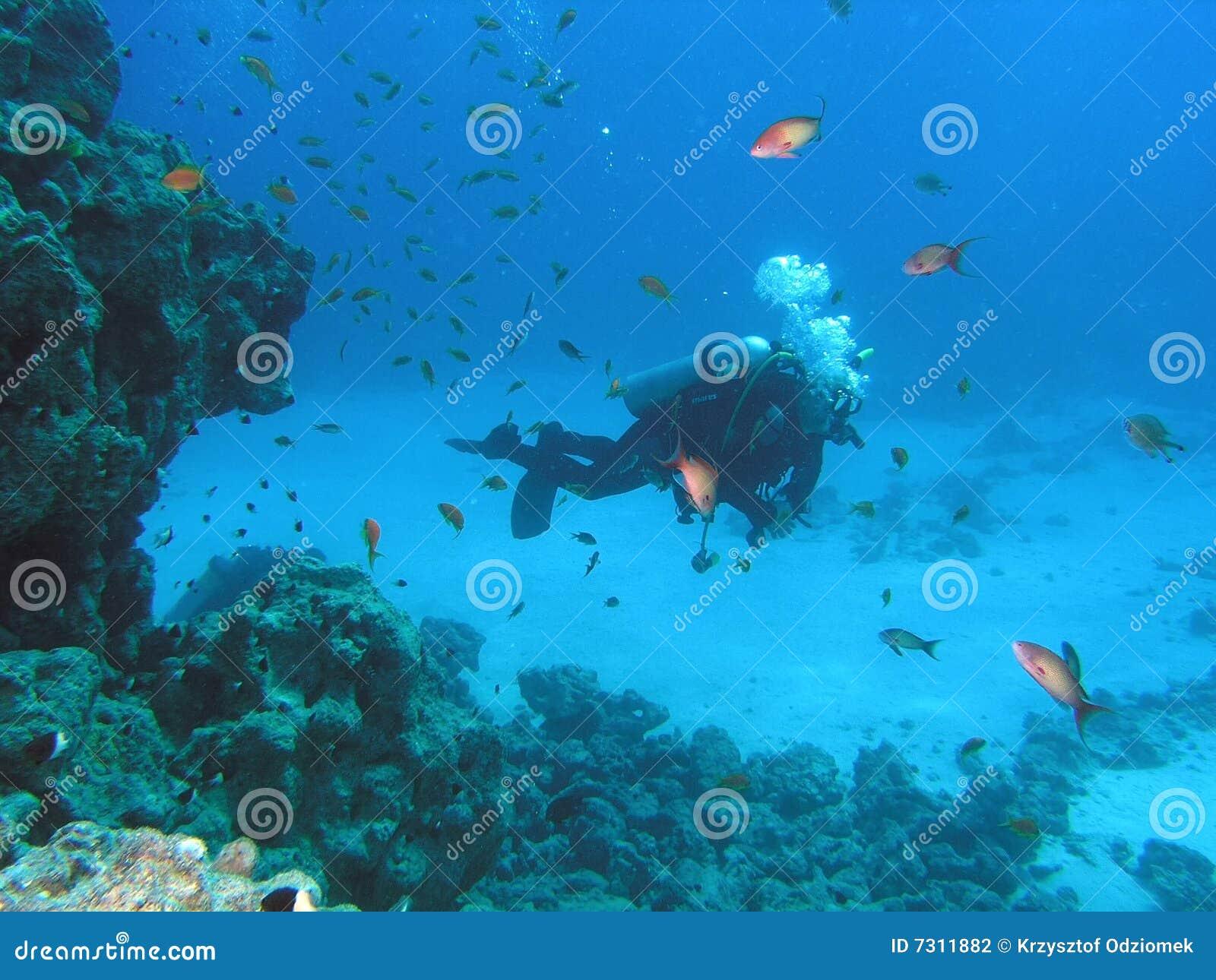 Operatore subacqueo sulla scogliera