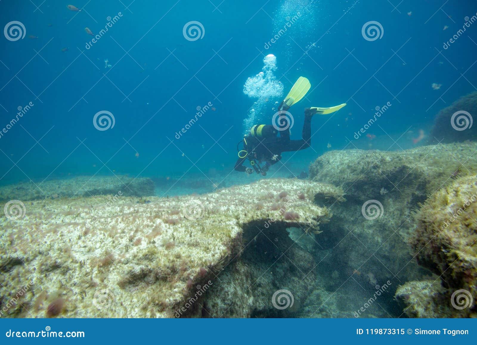 Operatori subacquei nell immersione vicino alla scogliera
