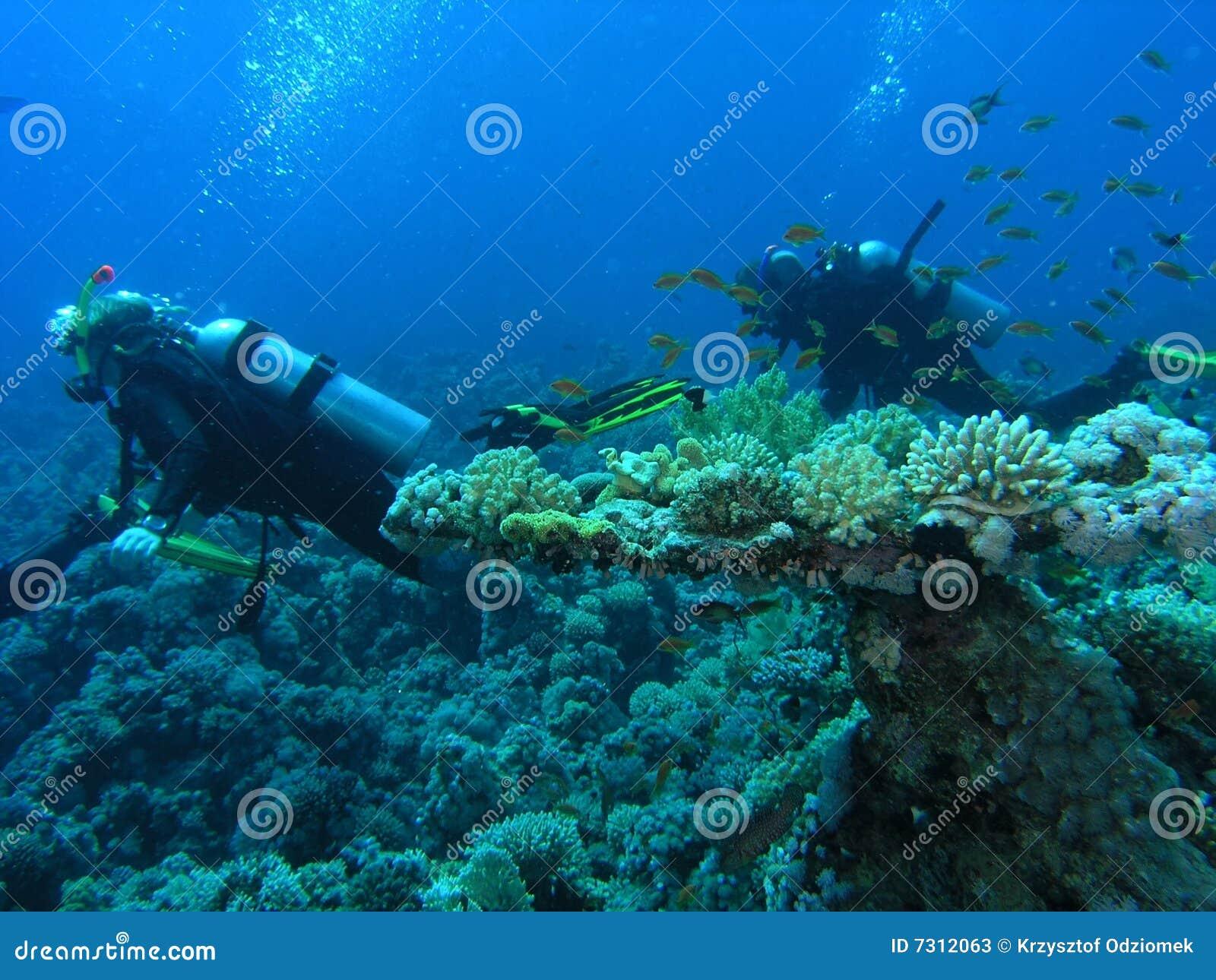 Operatori subacquei sulla scogliera