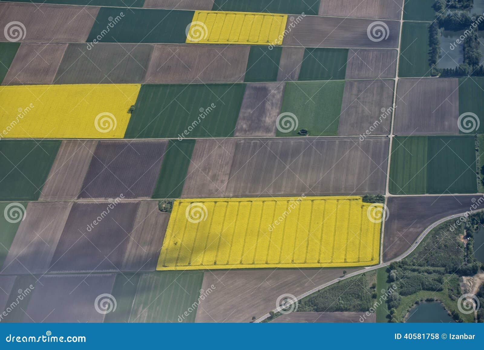 Opinião aérea cultivada dos campos