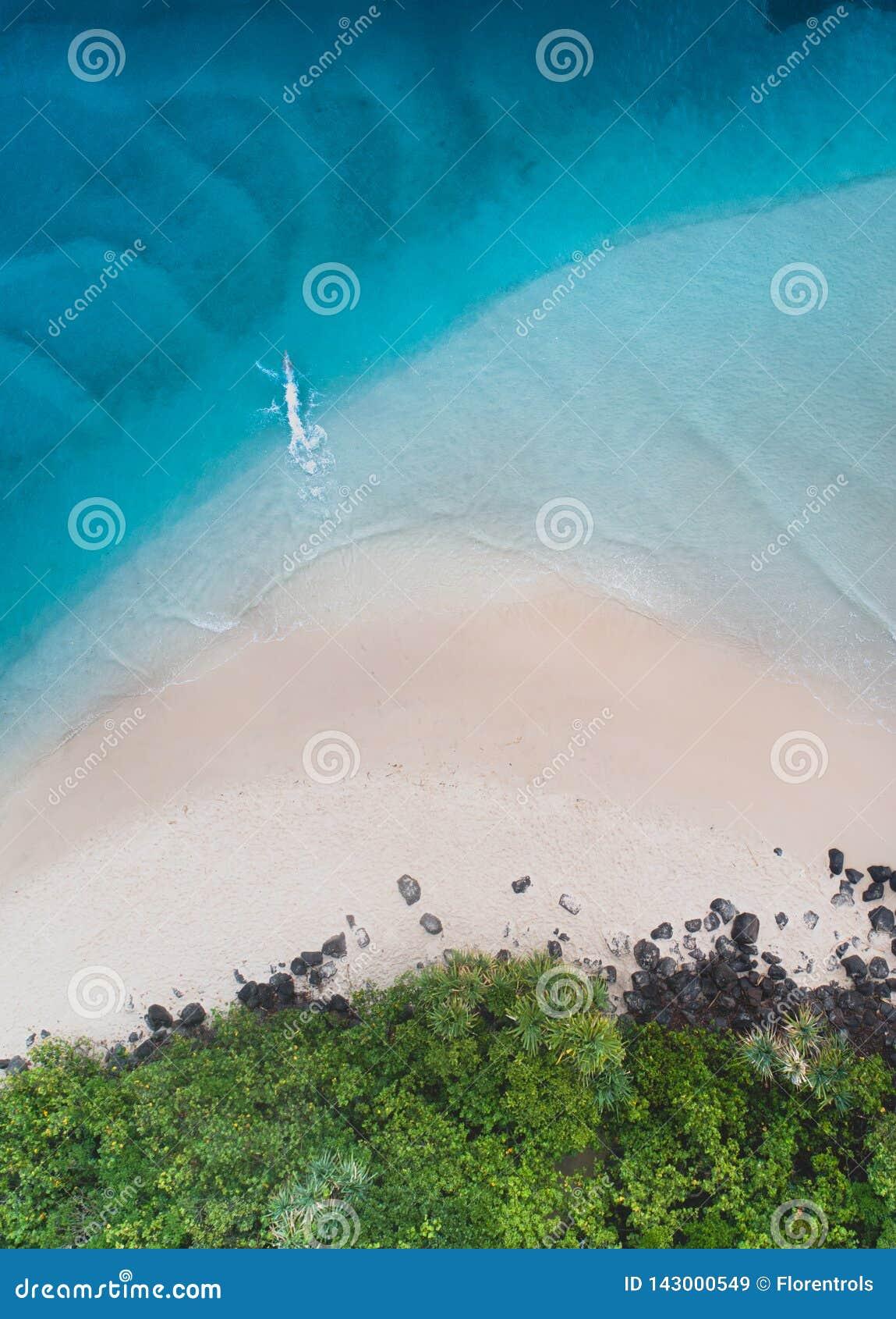 Opinião aérea da praia na opinião superior agradável de Gold Coast o oceano azul, alguém que saltou, a areia branca e os povos qu