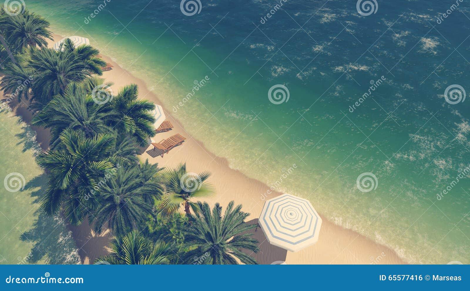 Opinião aérea da praia tropical e do oceano claro