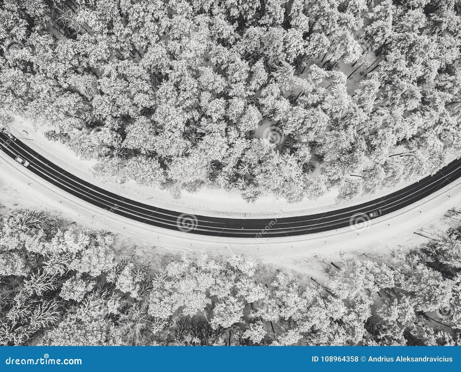 Opinião aérea do zangão da estrada na floresta nevado