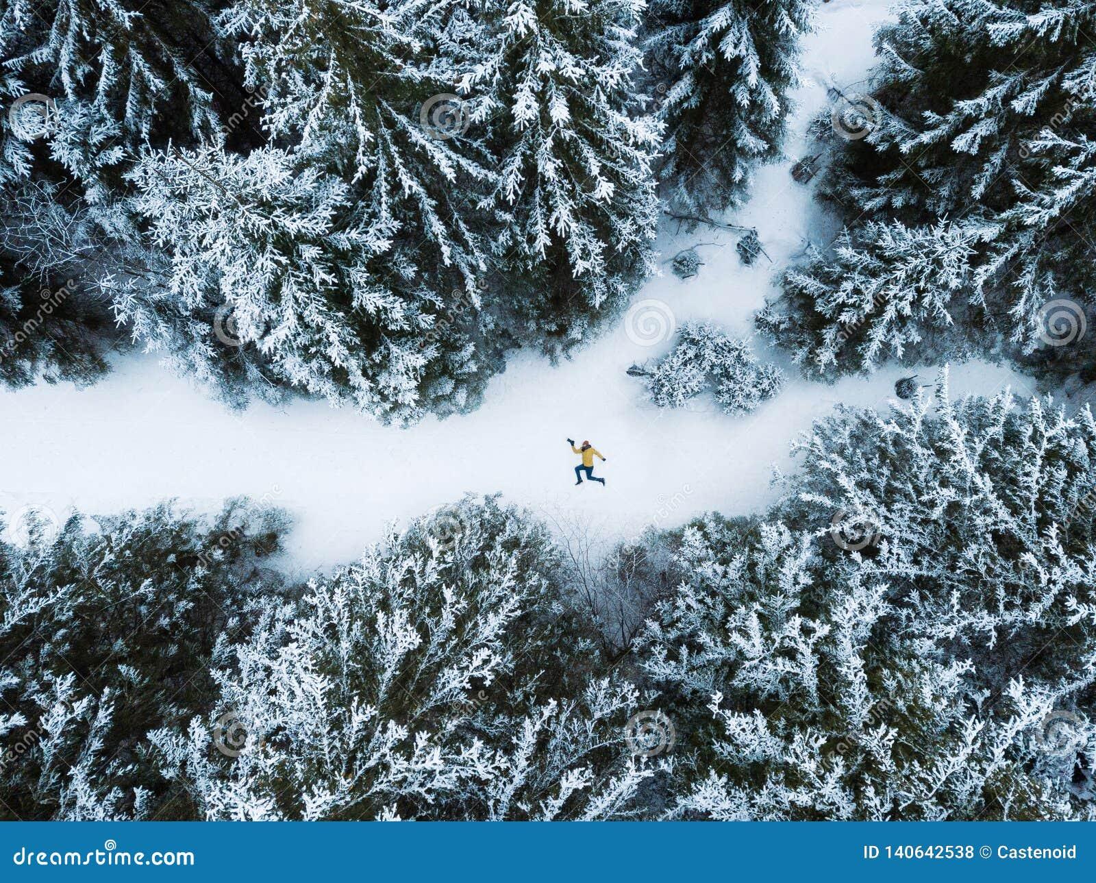 Opinião aérea o homem de encontro na floresta do inverno