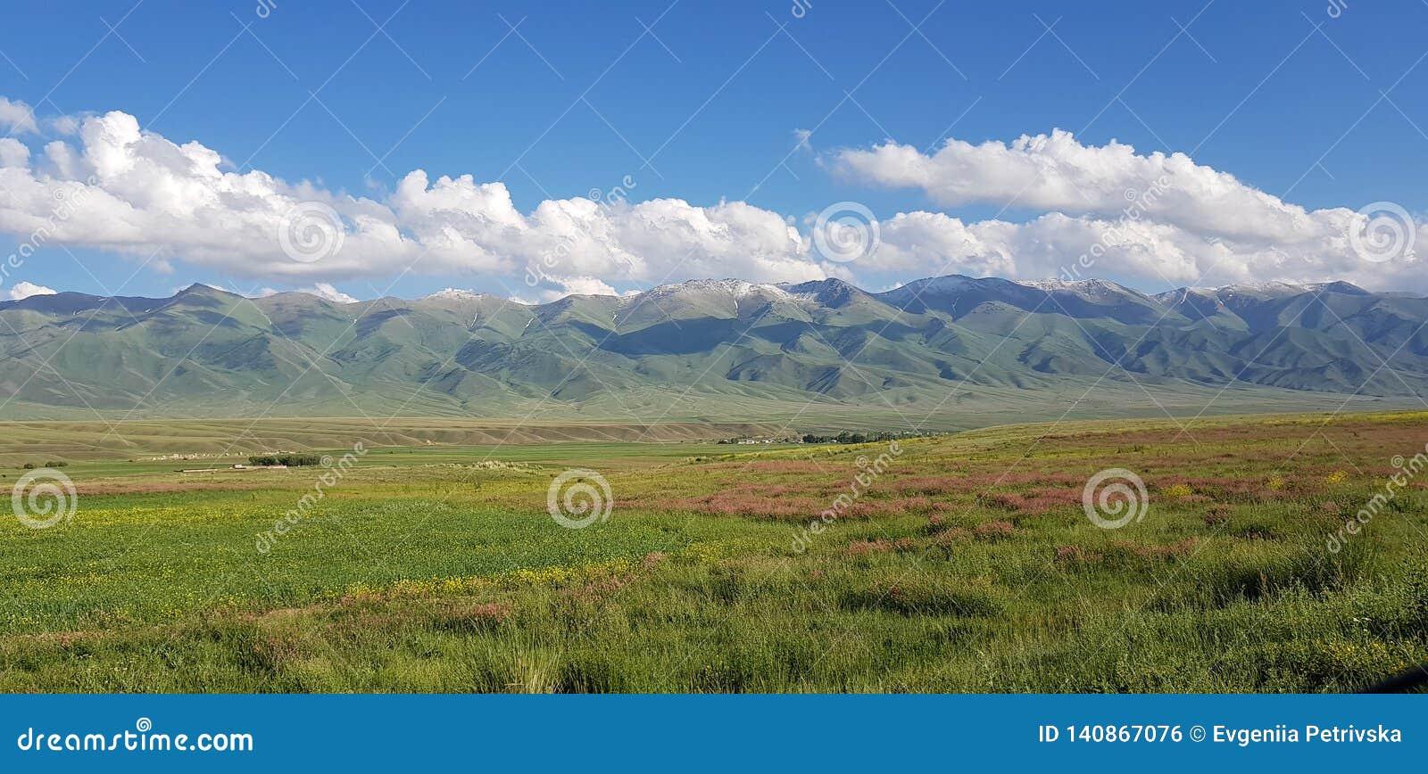 Opinião da mola em montanhas de Tian-Shan