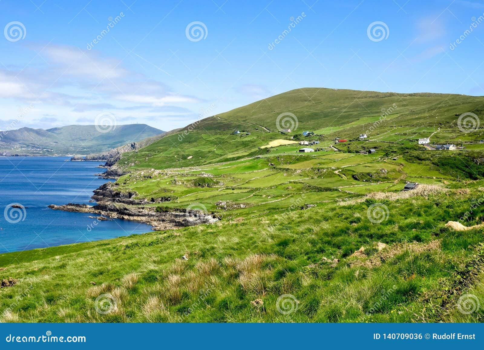 Opinião da paisagem no Kerry ocidental, península de Beara na Irlanda