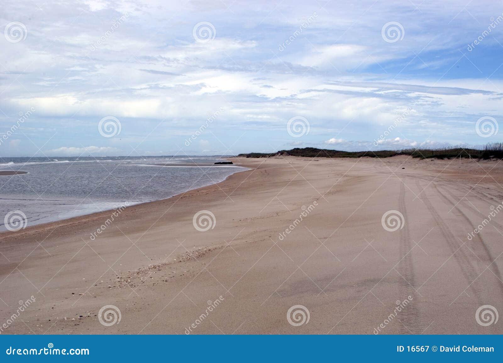 Opinião da praia com trilhas do pneu