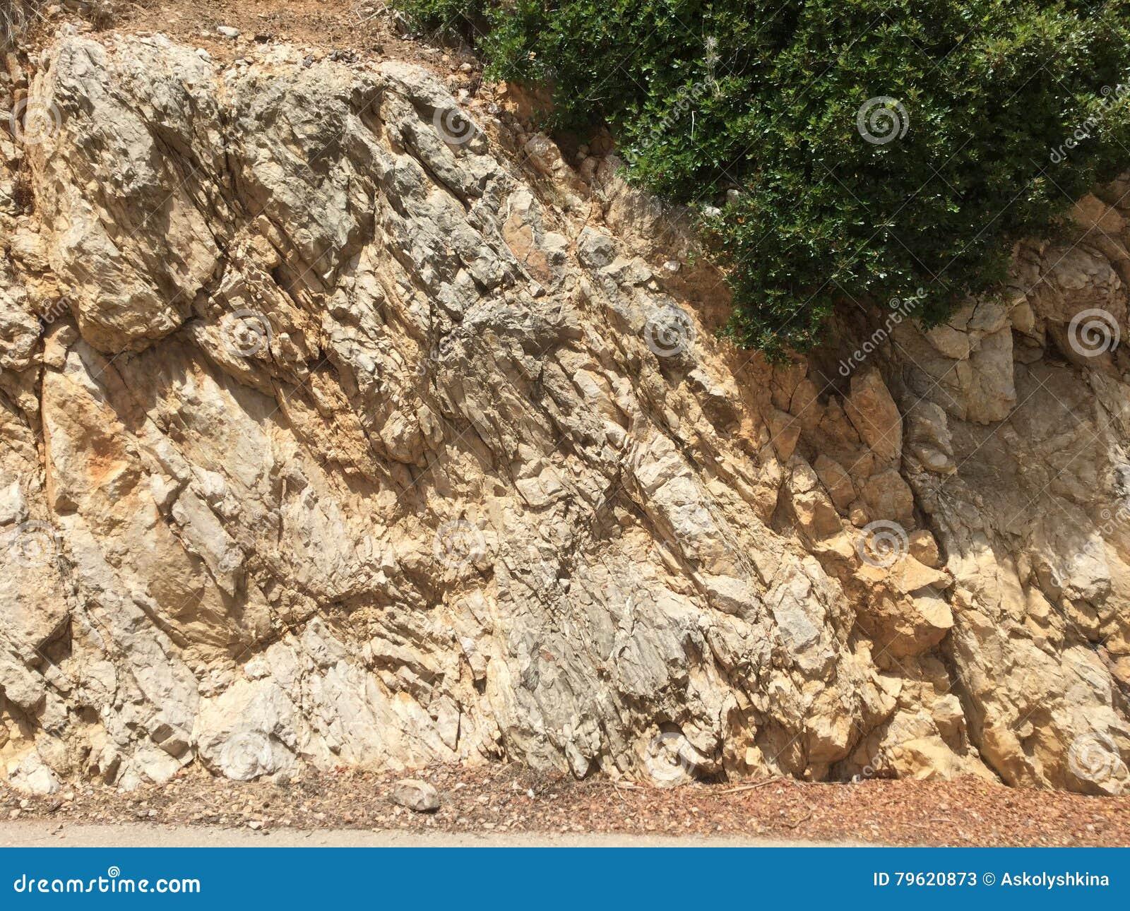 Opinião da rocha