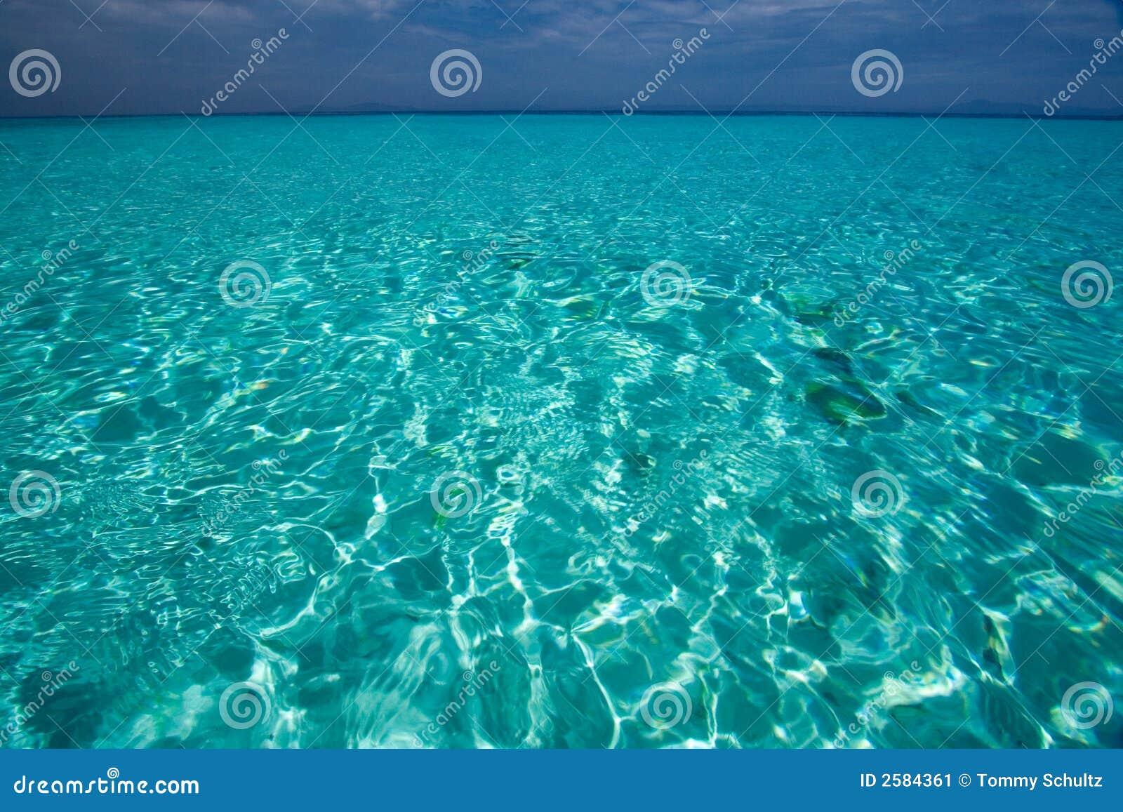 Opinião de oceano