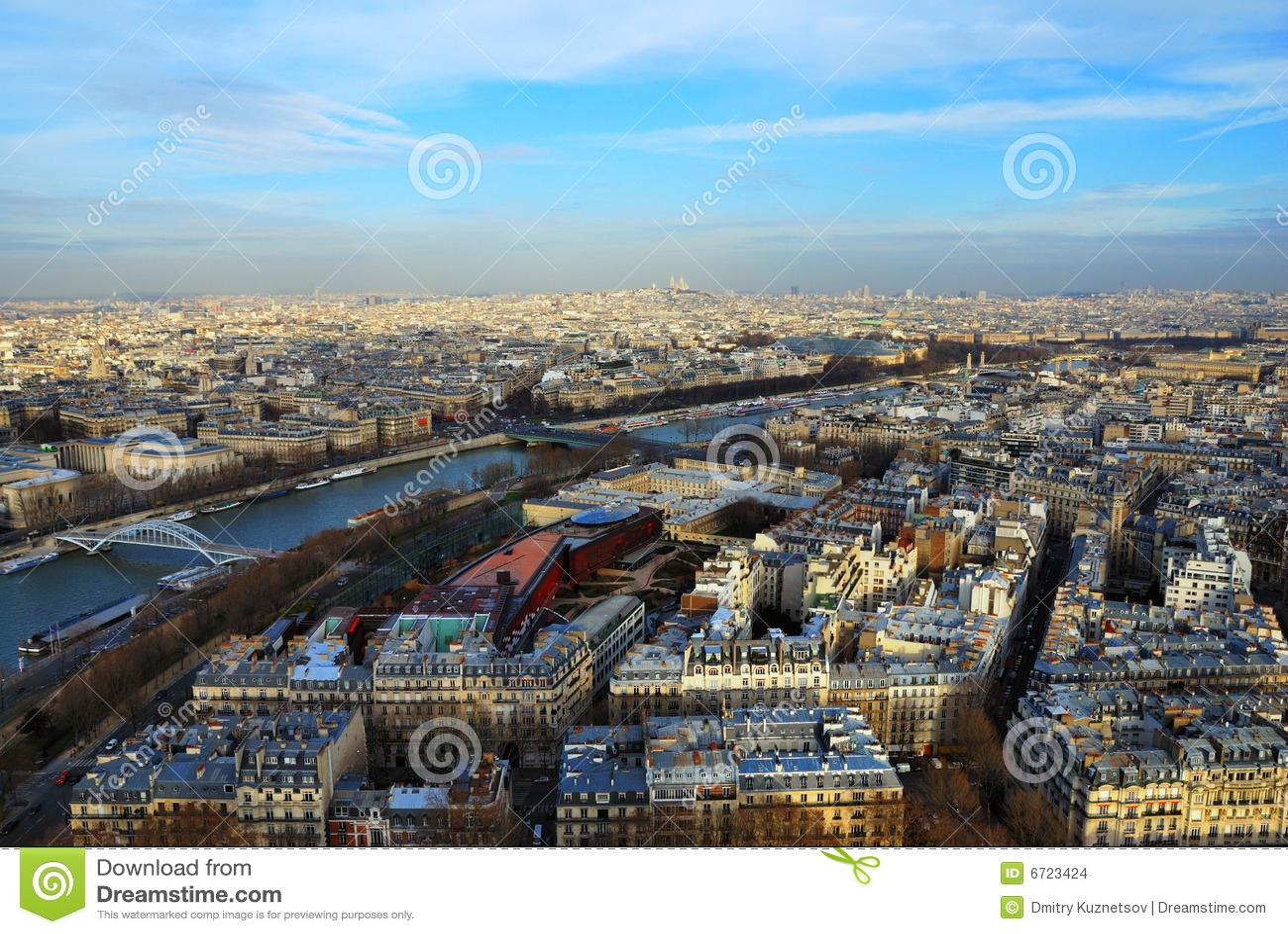 Opinião de olho de pássaro de Paris